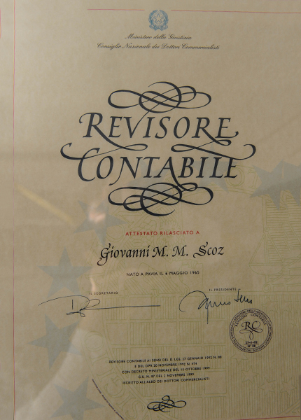 revisore-contabile